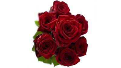 Hoe maak je een roos van latex?