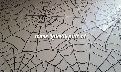 Exclusief latex - Patroon Spinnenweb